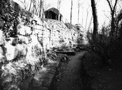 A winter view looking south along the base of the Royal Apartments. The rustic thatched shelter for visitors is still visible on the top. It was built to match the barn by using thin branches in a chevron design [Click here to open image in popup]