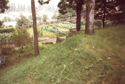 Looking south-west from between the Constable Tower and the Vetrans Shelter. For generations custodians living at the castle were allowed to use the lower area just outside the port-cullis as their private garden. This photo was taken in 1984 to record the park and garden features which were removed by the consolidation scheme of 1984-5 [Click here to open image in popup]