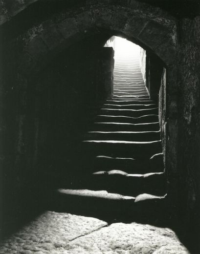 The steps leading from the bailey to the cellars of the great hall. In the foreground is the gothic arch which marks the lower cellar as an extension to the original cellar entered through a Norman arch [photograph c. 1995] [Click here to open image in popup]