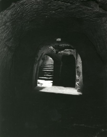 The lower cellars of the great hall below the bailey [photograph c. 1995] [Click here to open image in popup]